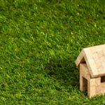 zielone dachy technologia